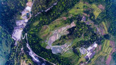 如果你喜歡山,美麗山城重慶會帶給你驚喜-華發網繁體版