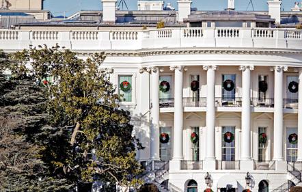 兩世紀見證 白宮最老樹末日-華發網繁體版