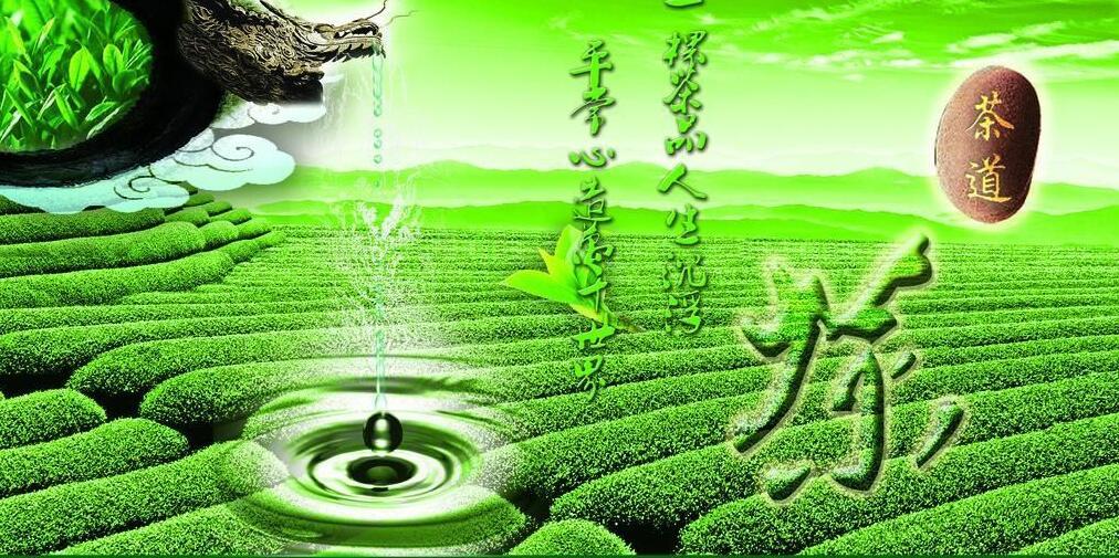 福建茶鄉——寧德 ▪ 茶香世界 - 華發網繁體版