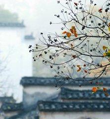 時光如你,風光恰好-華發網繁體版