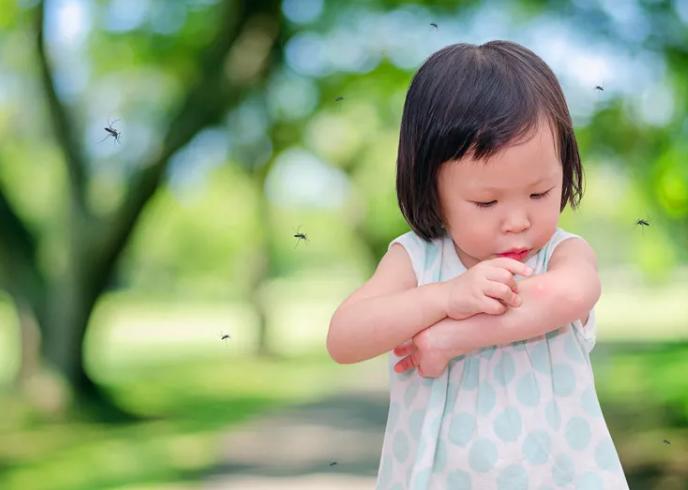 """為什麽蚊子偏偏愛給妳送""""紅包"""" - 華發網繁體版"""