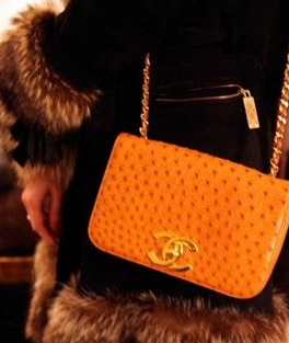 Chanel宣布停產野生動物皮時裝-華發網繁體版