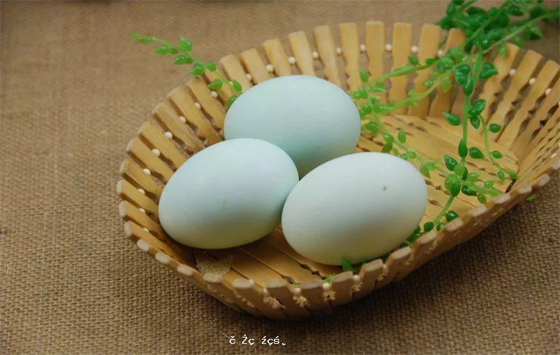 雞蛋、鴨蛋、鵪鶉蛋…哪一種更有營養?
