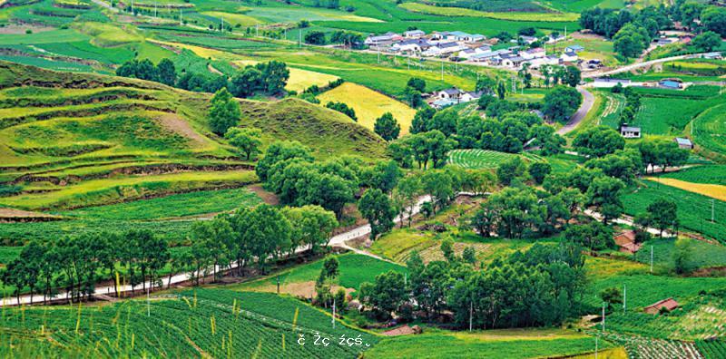 讓寧夏得到發展的「閩寧模式」-華發網繁體版