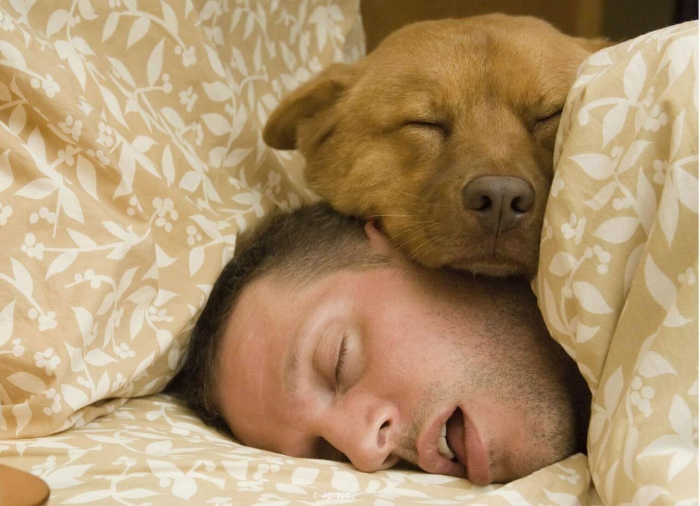 睡覺時磨牙是因為肚子裏有蟲?專家:註意這3點,千萬別忽視