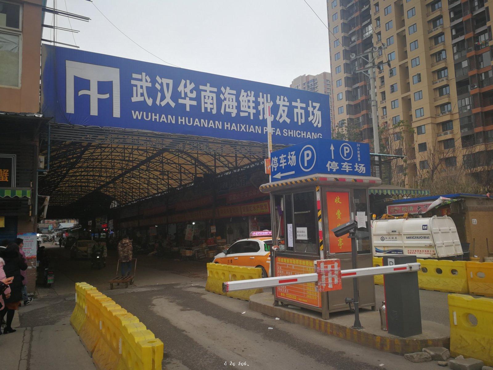 世衞公布報告 華南海鮮市場不是疫情發源地