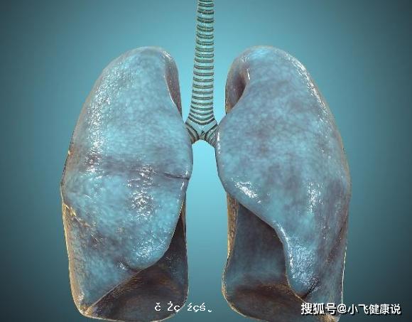 """晚上睡覺時,若發現5個異於尋常的情況,十有八九""""肺""""不太好"""